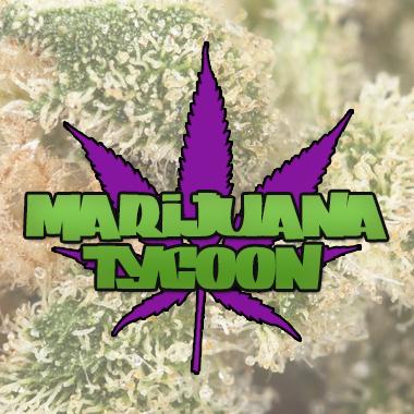 Marijuana Tycoon